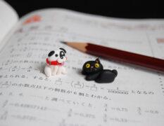 中学入試の体験
